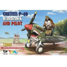 TT-002 CURTISS P-40 WARHAWK AND PILOT CUTE PLANE